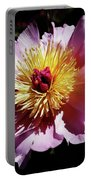 Spring Blossom 12 Portable Battery Charger