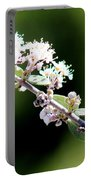 Spring Blossoms White 031015aa Portable Battery Charger