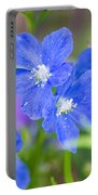 Spring Blue Portable Battery Charger