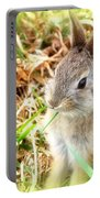 Spring Bunny Portable Battery Charger