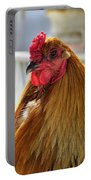 Spring Chicken Portable Battery Charger