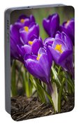 Spring Crocus Bloom Portable Battery Charger