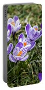 Spring Crocus With Scripture Portable Battery Charger