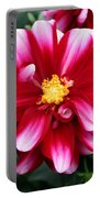Spring Flower 1 Portable Battery Charger