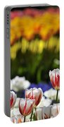 Spring Flowers 11 Portable Battery Charger