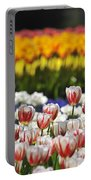 Spring Flowers 2 Portable Battery Charger