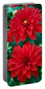Spring Flowers 5 Portable Battery Charger