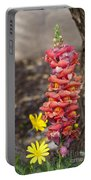 Spring Framed Portable Battery Charger