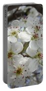 Spring Gala Portable Battery Charger