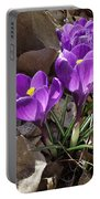 Spring Glory Portable Battery Charger