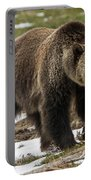 Spring Grizzly Bear Portable Battery Charger