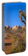 Spring In Joshua Tree National Park Portable Battery Charger