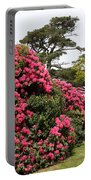 Spring In Muckross Garden - Ireland Portable Battery Charger