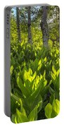 Spring In The Wasatch Portable Battery Charger