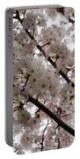 Spring Is Beautiful - A Cloud Of Pastel Pink Blossoms Portable Battery Charger
