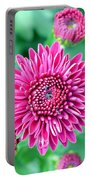 Spring It On Portable Battery Charger