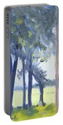 Spring Marsh From Deerfield Road Portable Battery Charger