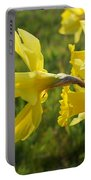 Spring Meadow Field Daffodil Flowers Portable Battery Charger