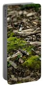 Spring Moss Portable Battery Charger