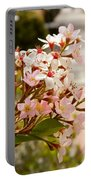 Spring On The Street Portable Battery Charger