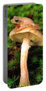 Spring Peeper On Mushroom Portable Battery Charger