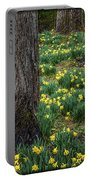 Spring Prayers E184 Portable Battery Charger
