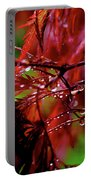 Spring Rain Portable Battery Charger by Rona Black