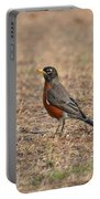 Spring Robin 2014 Portable Battery Charger