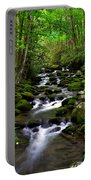 Spring Runoff Portable Battery Charger