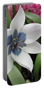 Spring Star Portable Battery Charger