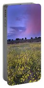 Spring Storm At Andalucia Portable Battery Charger