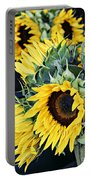 Spring Sunflowers Portable Battery Charger