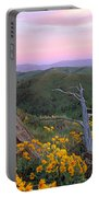 Spring Sunset Portable Battery Charger