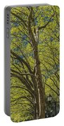 Spring Time In Bryant Park New York Portable Battery Charger by Angela A Stanton
