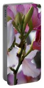 Spring Tree Blossoms Portable Battery Charger
