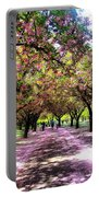 Spring Walkway Lined By Blooming Cherry Trees Portable Battery Charger
