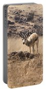 Springbok Portable Battery Charger