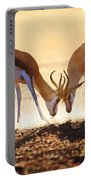 Springbok Dual In Dust Portable Battery Charger