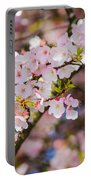 Spring's First Blush Portable Battery Charger