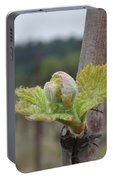 Spring In The Vineyard Portable Battery Charger