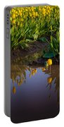 Springs Reflection Portable Battery Charger