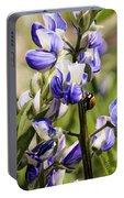 Springtime Bluebonnet Portable Battery Charger