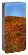 Sproul State Forest Portable Battery Charger