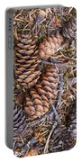 Spruce Cones Portable Battery Charger