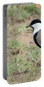 Spur-winged Lapwing Portable Battery Charger