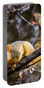 Squirrel 1 Portable Battery Charger