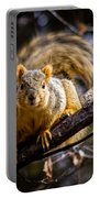 Squirrel 2 Portable Battery Charger