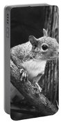 Squirrel Black And White Portable Battery Charger