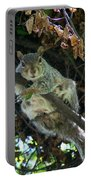 Squirrel By Nest Portable Battery Charger