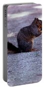Squirrel Eating A Nut Portable Battery Charger